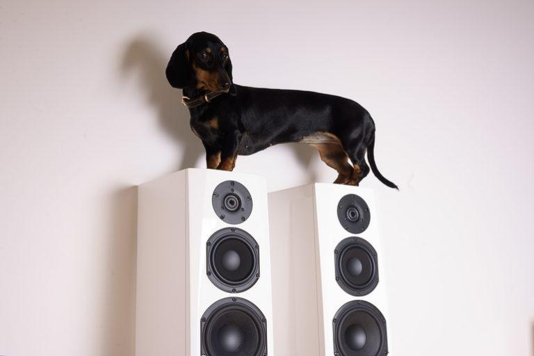 5.1 Lautsprecher-3